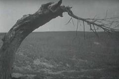 der-heideboden-1933-aavv-01