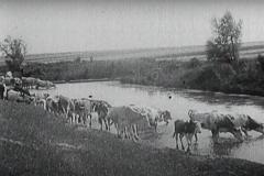 der-heideboden-1933-aavv-02