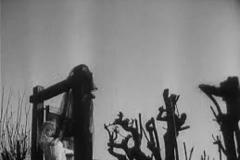 der-rabe-1951-the-raven-steinwendner-03