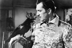 der-rabe-1951-the-raven-steinwendner-06