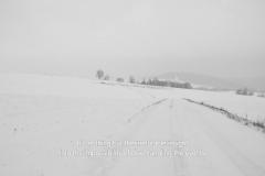 heimat-is-a-space-in-time-2019-heimat-ist-ein-raum-aus-zeit-heise-07