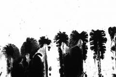 night-fly-2019-blitz-recensione