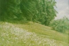 paradise-threatened-2015-das-bedrohte-paradies-heltschl-05