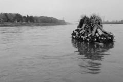 washed-ashore-1994-angeschwemmt-geyrhalter-05