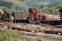 wood-2020-sinziger-kirst-lazurean-gorgan-05