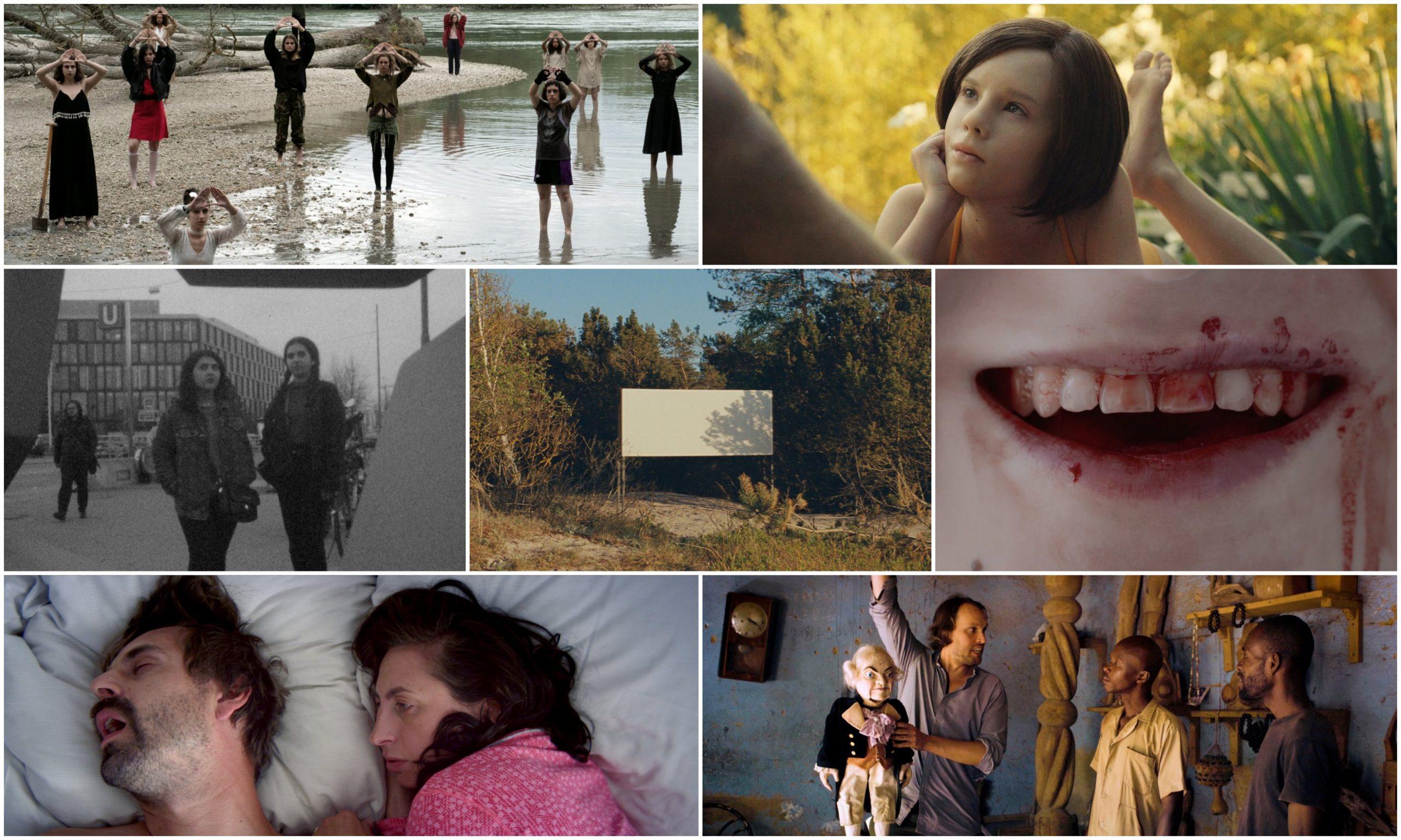 collezione-diagonale20-die-unvollendete-alla-viennale-cinema-austriaco