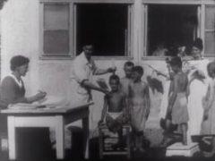 wahrend-des-ersten-weltkriegs-teil-2-cinema-austriaco